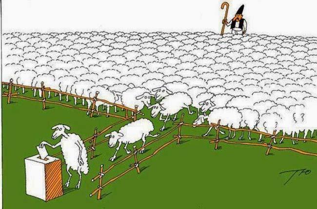 Αποτέλεσμα εικόνας για προβατα ψηφιζουν