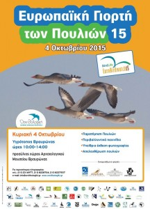 ΕΥΡΩΠΑΪΚΗ ΓΙΟΡΤΗ των ΠΟΥΛΙΩΝ 2015 - Γιορτάζουμε τη μετανάστευση στον Υγρότοπο Βραυρώνας Αττικής